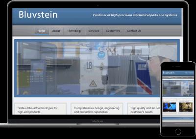bluvstein סיגלון בניית אתרים