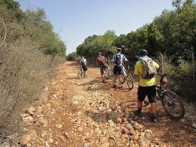 סיורי אופניים בתל-אביב